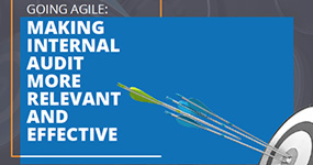 Adopting Agile Audit to Stay Relevant and Effective